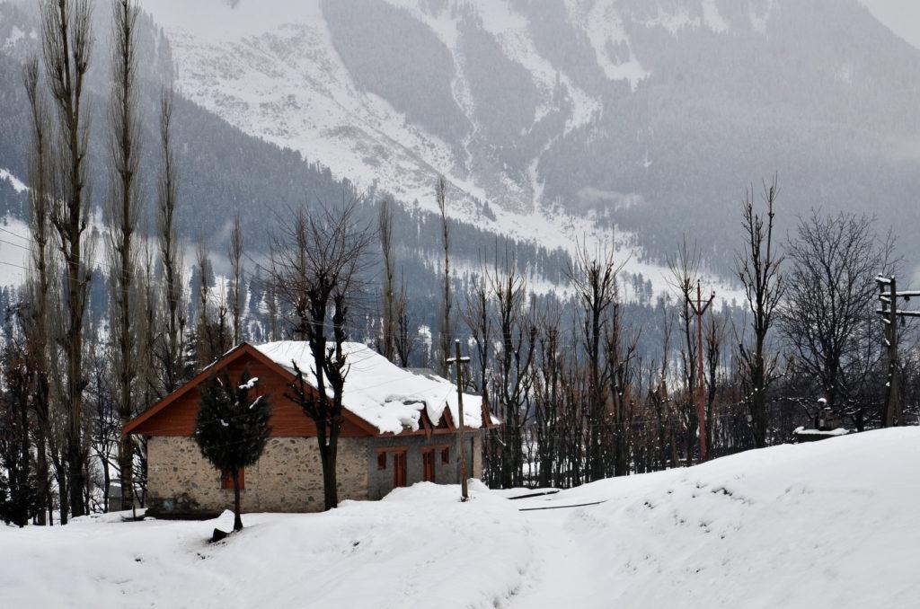 Gagangir village, Sonmarg, Kashmir.