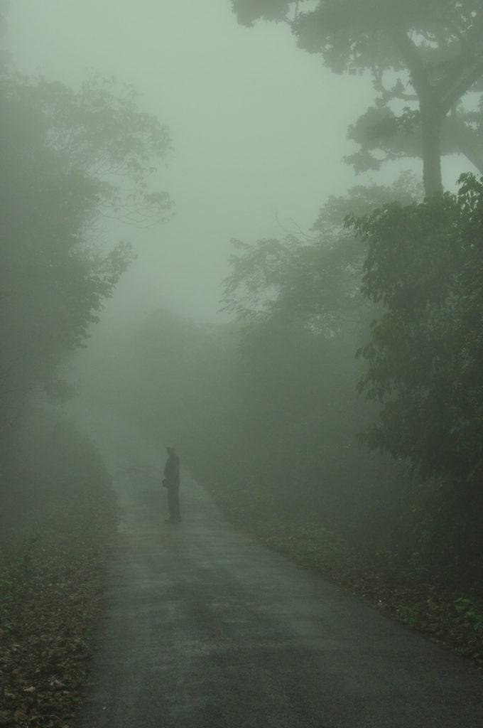 Kundadri Hills during Monsoons, Agumbe.