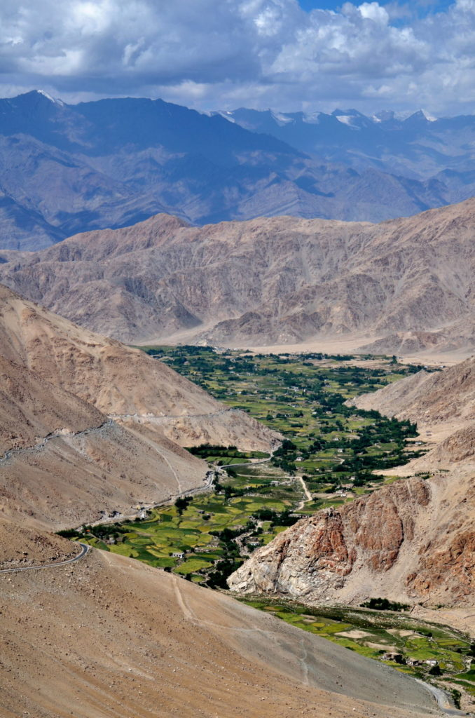 Green valley, Ladakh