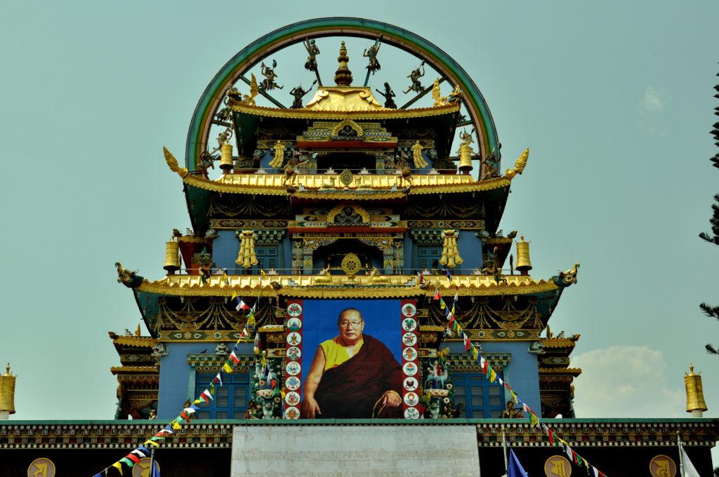 The portrait of Pema Norbu Rinpoche